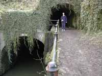 Shrewley tunnel(s)